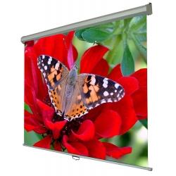 Экраны для проекторов